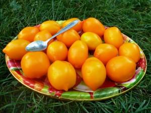 dobavlen-sort-pomidory-limon-liana-il