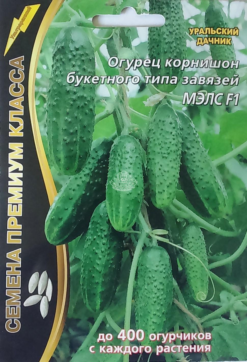 ogurec-myels-f1