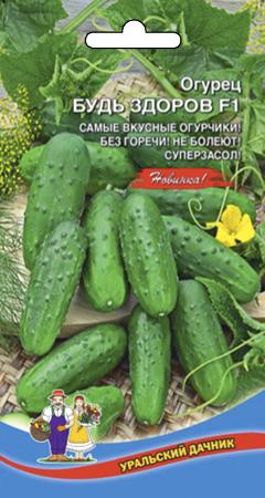 ogurec-bud-zdorov-f1