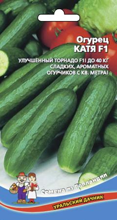 ogurec-katya-f1