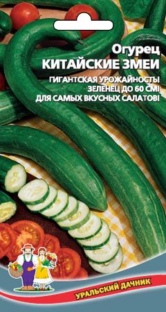ogurec-kitayskie-zmei