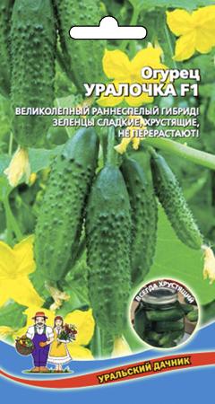 ogurec-uralochka-f1