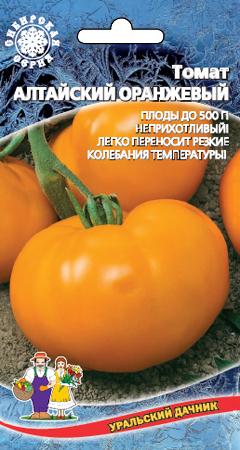 tomat-altayskiy-oranzhevyy