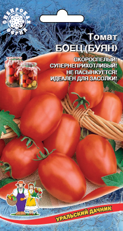 tomat-boec-buyan