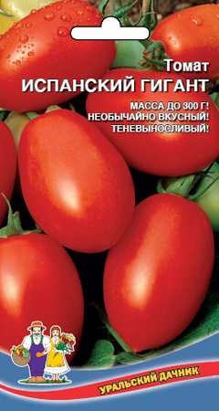 tomat-ispanskiy-gigant