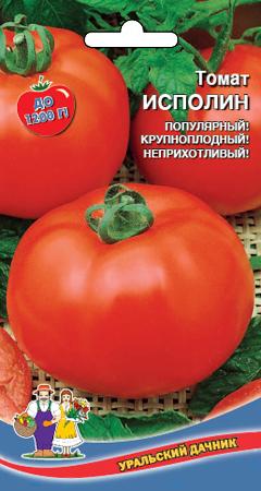 tomat-ispolin