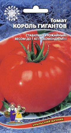 tomat-korol-gigantov