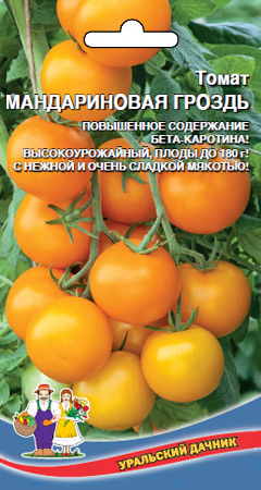 tomat-mandarinovaya-grozd