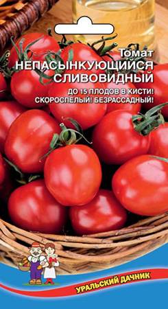 tomat-nepasynkuyushh-sya-slivovidnyy