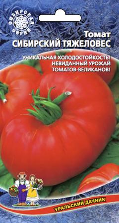 tomat-sibirskiy-tyazheloves