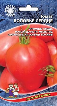 tomat-volove-serdce