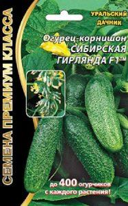 ogurec-sibirskaya-girlyanda-f1