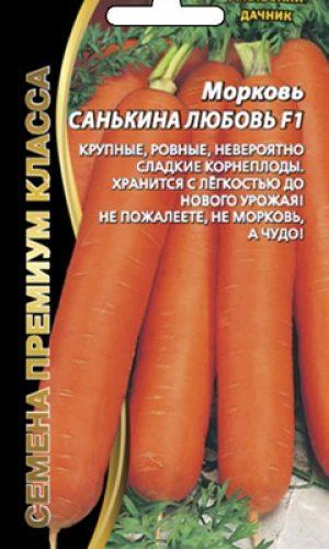 sankina-lyubov