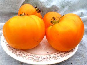 Томат  German Orange Strawberry — Клубника Оранжевая