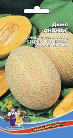 dynya-ananas