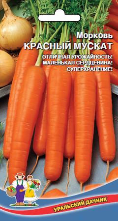morkov-krasnyy-muskat