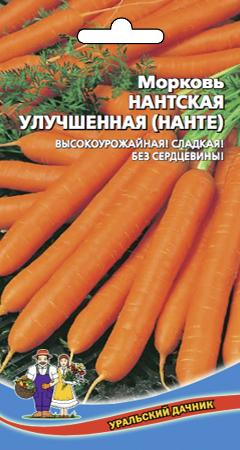 morkov-nantskaya-uluchshennaya-nante