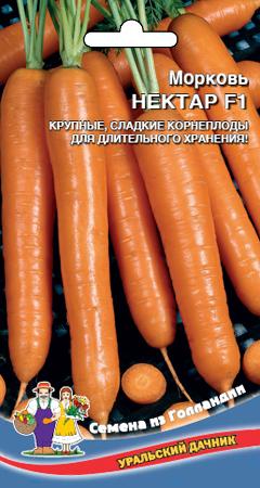 morkov-nektar-f1