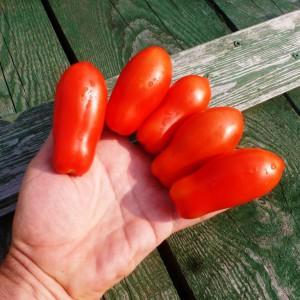 Дамские пальчики из Неаполя