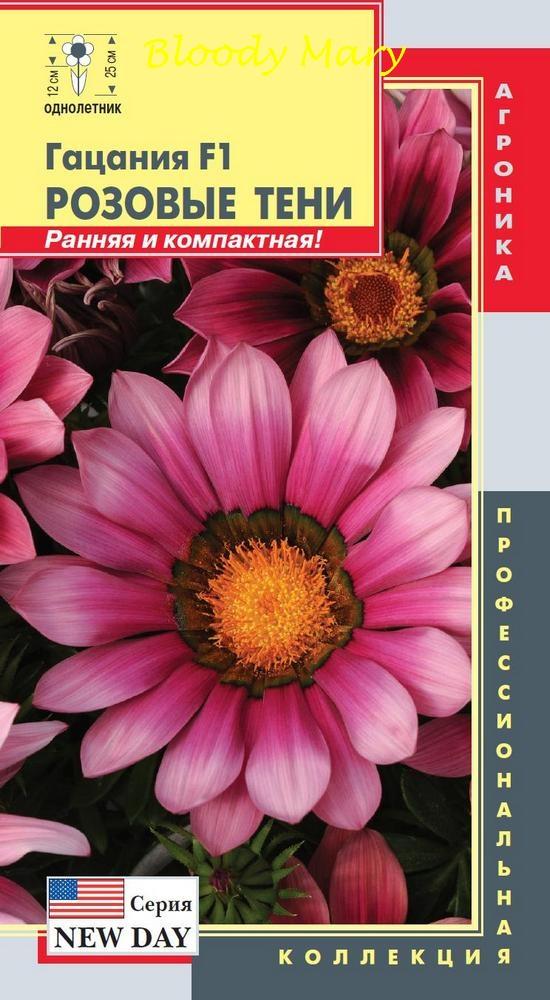 gacaniya-f1-seriya-new-day-rozovye-teni-plaz