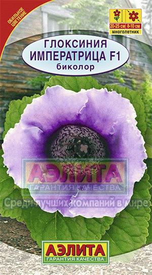 gloksiniya-f1-seriya-empress-imperatrica-bikol
