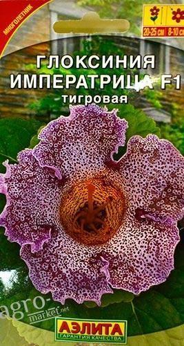 gloksiniya-imperatrica-tigrovaya-5sht-aye