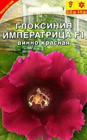 gloksiniya-imperatrica-vinno-krasnaya-5
