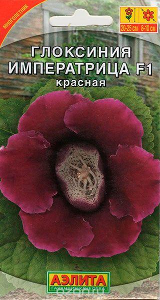 gloksiniya-imperatrica-krasnaya-5sht-ayel