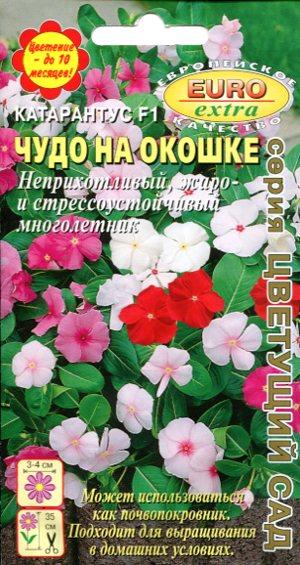 katarantus-chudo-na-okoshke-ayelita