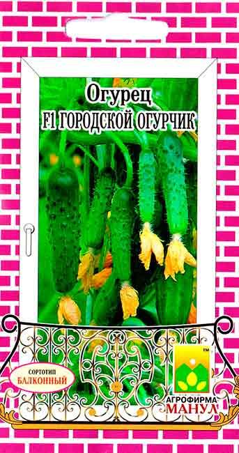 ogurec-gorodskoy-ogurchik-f1