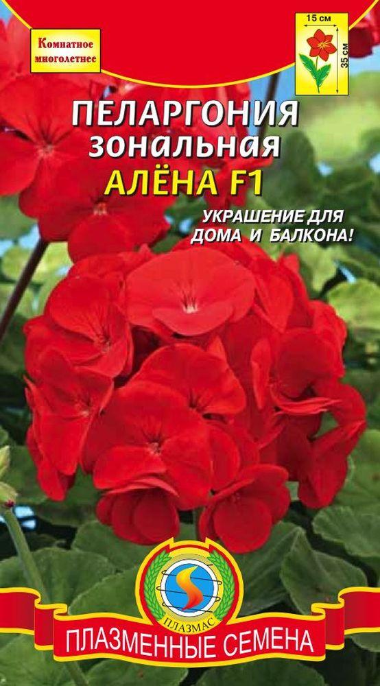 pelargoniya-zonalnaya-alena