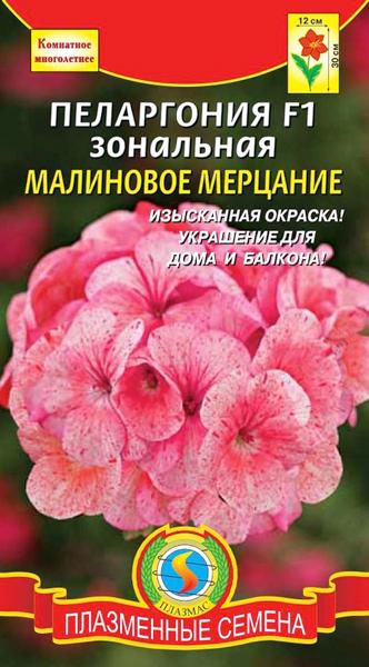 pelargoniya-zonalnaya-malinovoe-merc