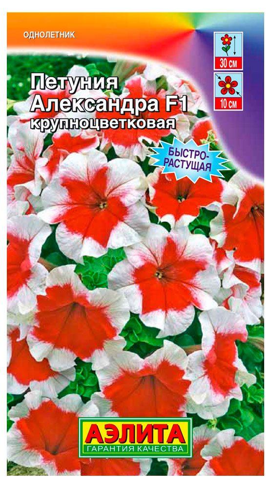 petuniya-aleksandra-ayelita