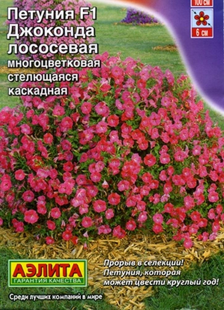petuniya-dzhokonda-lososevaya