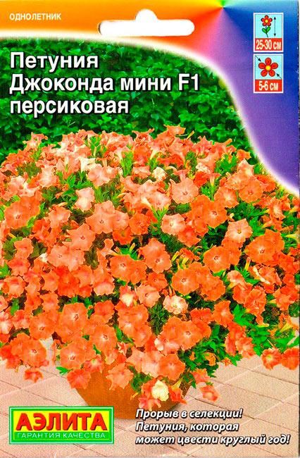 petuniya-dzhokonda-mini-persikovaya-ayel