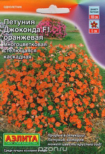 petuniya-dzhokonda-oranzhevaya
