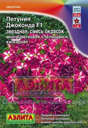 petuniya-dzhokonda-zvezdnaya-smes