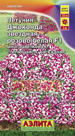 petuniya-dzhokonda-zvezdno-rozovaya-ayel
