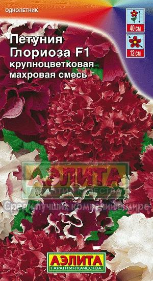 petuniya-glorioza-makhrovaya-smes-ayeli