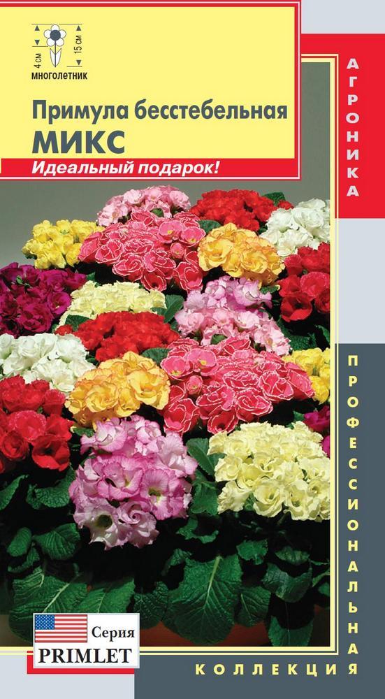 primula-besstebelnaya-miks-5sht-agroni