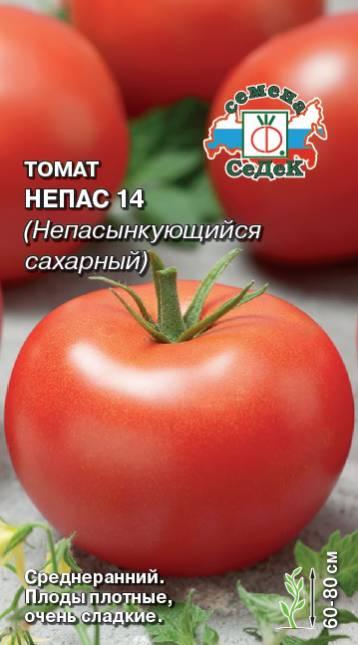tomat-nepasynkuyushhiysya-sakharnyy