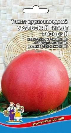 tomat-uralskiy-gigant-rozovyy