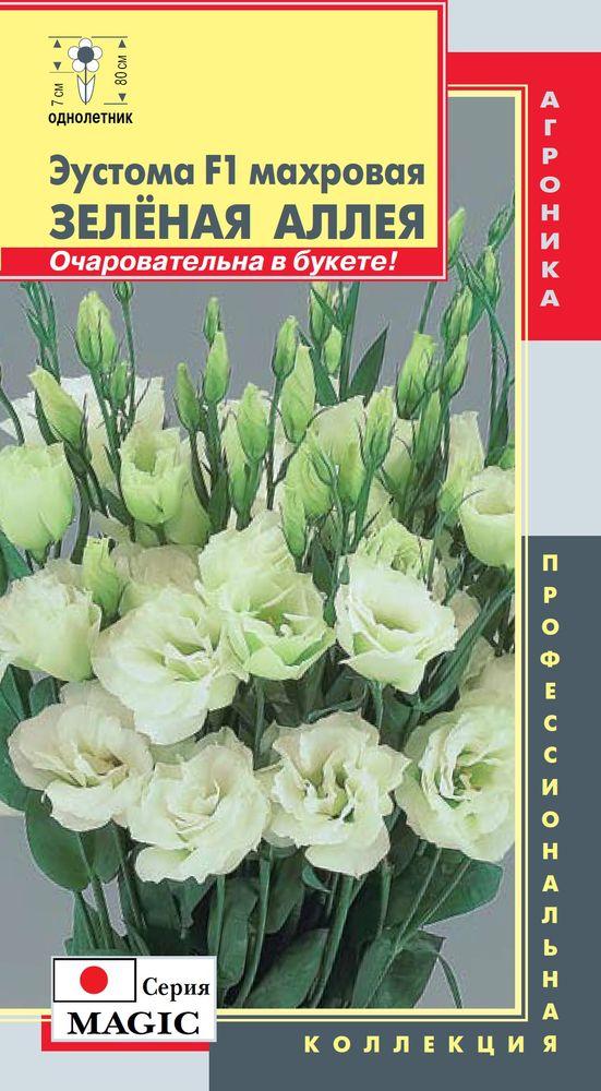 zelenaya-alleya