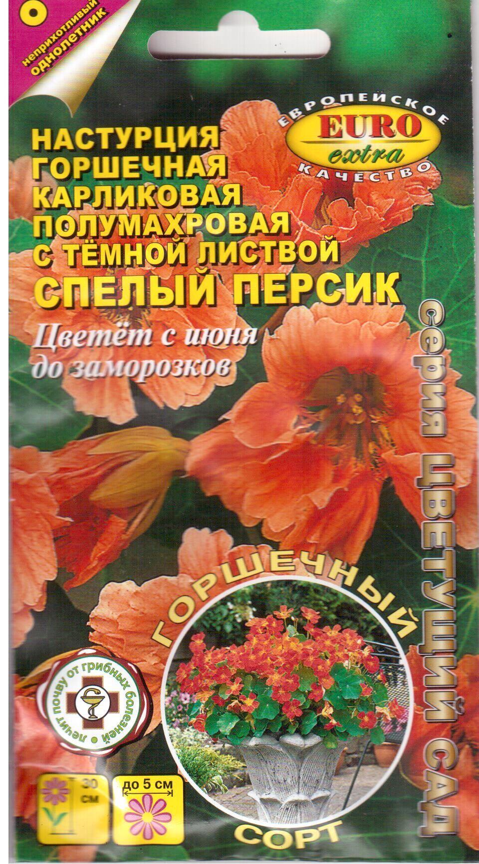 nasturtsiya_spelyy_persik_karlgorshechaelita_001