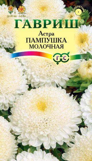 astra-pampushka-molochnaya-gavrish