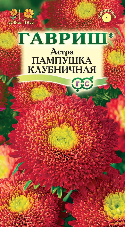 astra-pampushka-klubnichnaya-gavrish