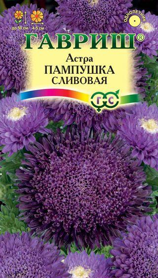 astra-pampushka-slivovaya-gavrish
