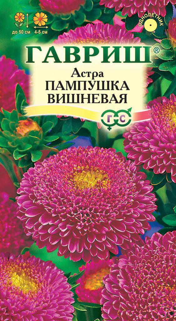 astra-pampushka-vishnevaya-gavrish