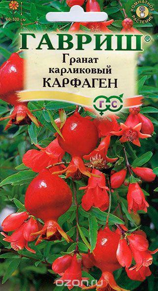 granat-karfagen-karlikovyy-5sht-gavrish