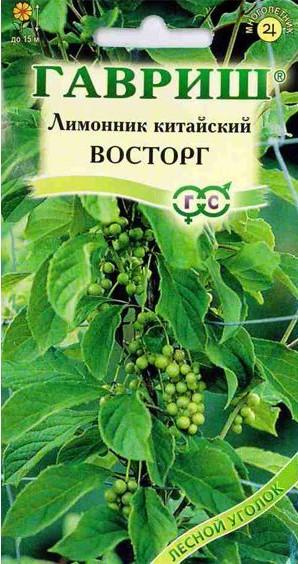 limonnik-kitayskiy-gavrish